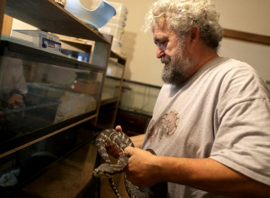 Steve Keller has had an affinity for snakes most of his life. Here he looks over some of the snakes that share his home in Menasha.