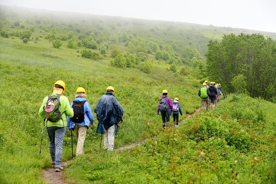 On June 2, 2018, National Trails Day, more than 100 volunteers chopped, pruned, drilled, sawed, shoveled, hacked, planted and hammered a 2-mile section of the Appalachian Trail that crosses Max Patch Bald to repair decades of damage from water, weather and over-zealous hikers.
