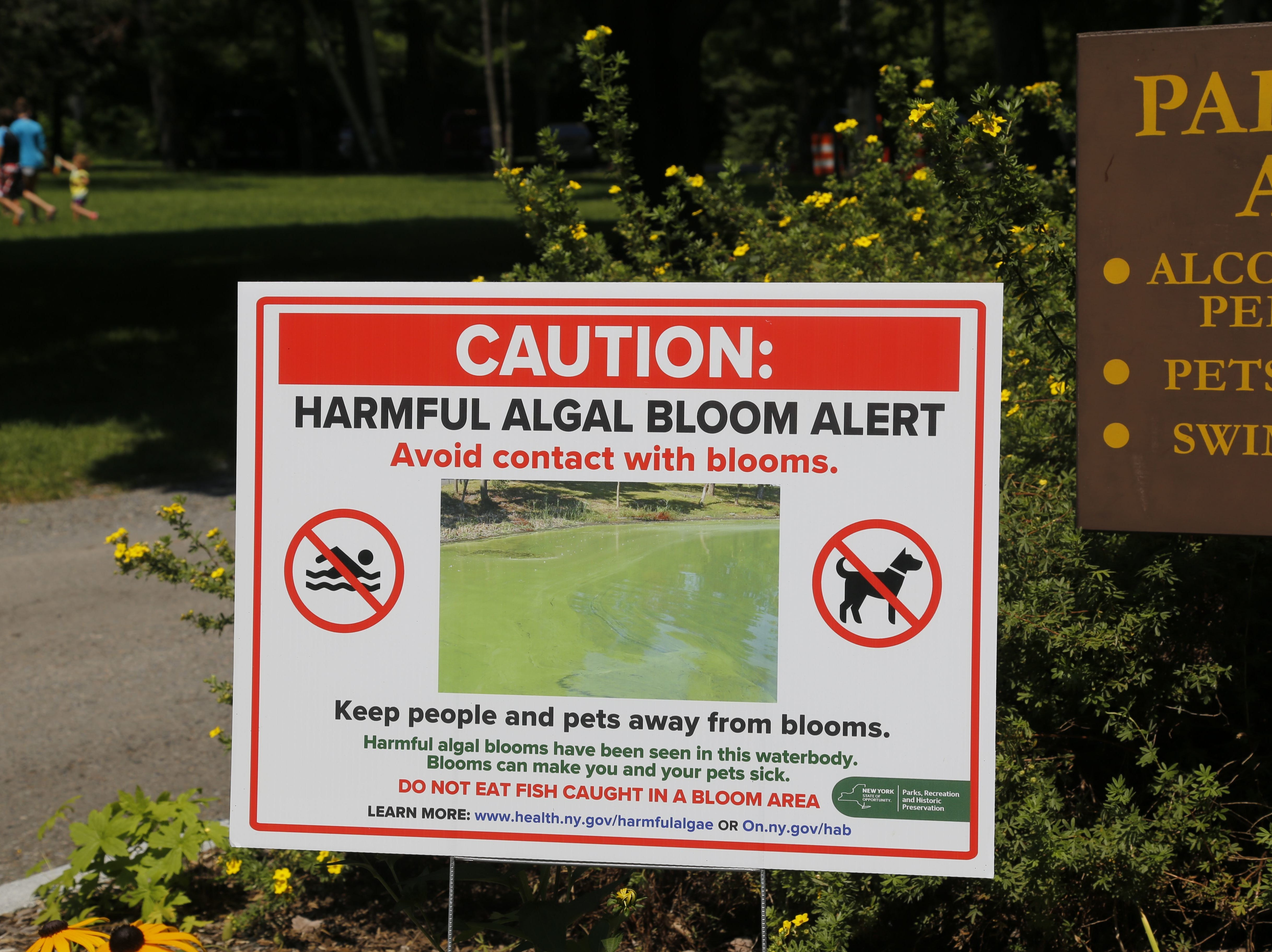 A sign cautioning visitors about blue-green algae blooms greets cars as they enter Taughannock Falls State Park.