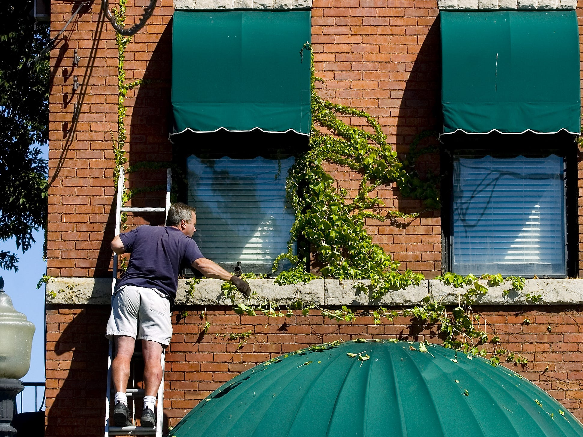 Bobby Ehrich, of the Number 5 Restaurant, removes the vines that have been growing on the historic building in August of 2007. The vines were starting to damage the building, a former firehouse, which was built in 1897.