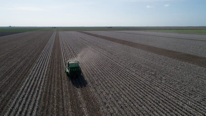 Jon Whatley drives a cotton picker as he harvests his crop in San Patricio County on Thursday, Aug.16, 2018.