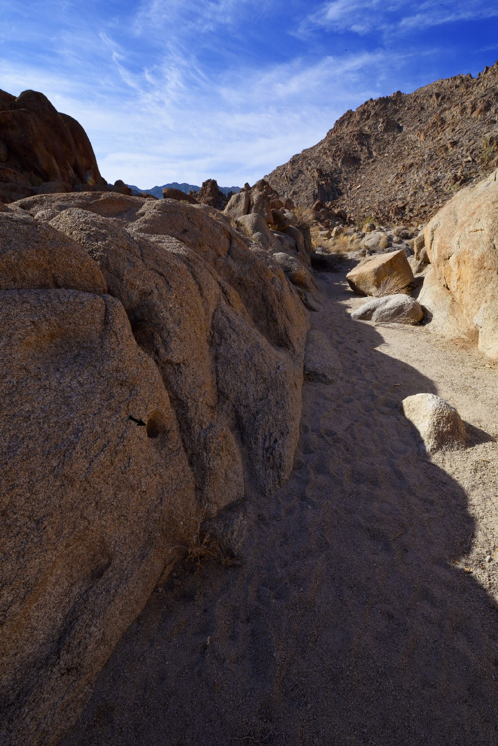 The gully where late Palm Springs naturalist Edmund Jaeger discovered a hibernating poor-will