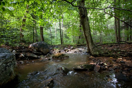 A stream rushes through the Strawberry Hill Nature Preserve in Adams County.