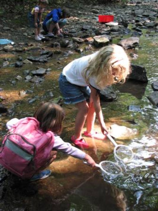 Kids In Stream At Strawberry Hill Nature Preserve