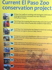 A list of current conservations project by the El Paso Zoo is on display on a new kiosk at the zoo's entrance.