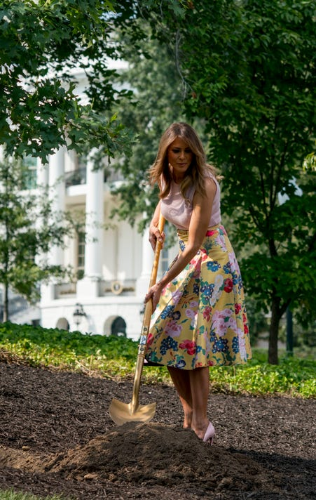 Ap First Lady Tree Planting A Usa Dc