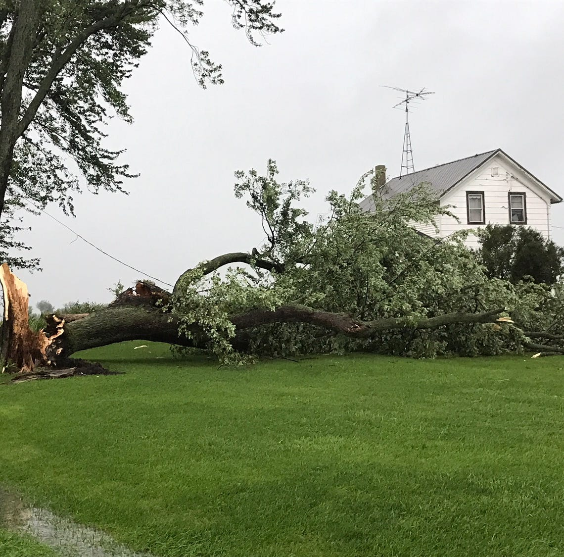 Powerful storm leaves damage, flooding across much of east-central Wisconsin