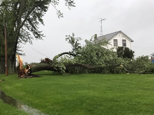 A large tree fell along the Cherry and Center Road north of Waupun as the storm broke through The area Tuesday afternoon