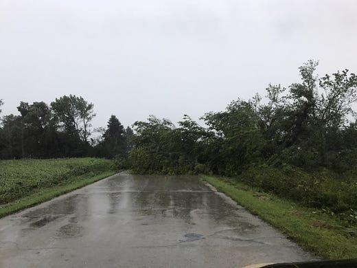 A fallen tree blocks Cattaraugus Road north of Waupun Tuesday afternoon [19659116] Autoplay </span></p> <p><span class=