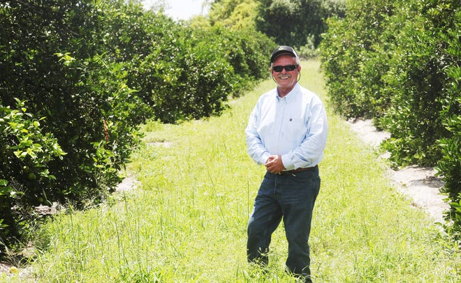 Wayne Simmons grows citrus off the Caloosahatchee River west of LaBelle. He is a sixth generation farmer and says we are all to blame for the water woes Southwest Florida is experiencing. He says he would be put out of business without the use of fertilizers.