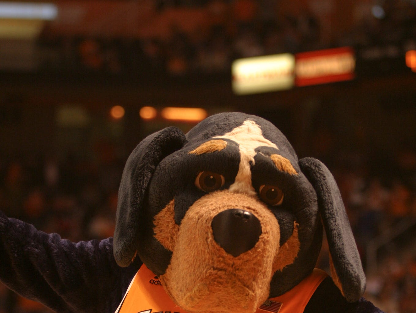 Jamie Meadows, owner of Knoxville-based Character Impressions LLC, was the University of Tennessee's Smokey mascot from 1999 to 2002. Meadows has opened a business to market the use of mascots to businesses and has been inducted into the Mascot Hall of Fame.