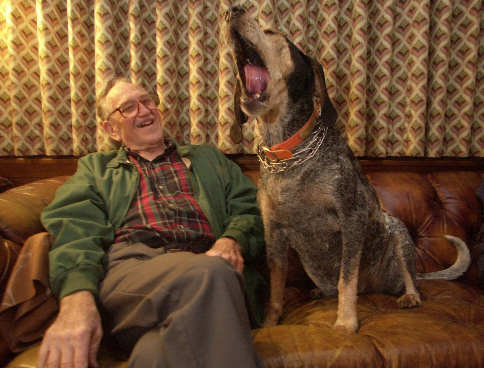 Earl Hudson, Smokey's owner, laughs as his dog lets out a big yawn while sitting next to him on the couch Friday evening before leaving for the fraternity house. All eight Smokeys have been in the the Hudson family for 50 years.