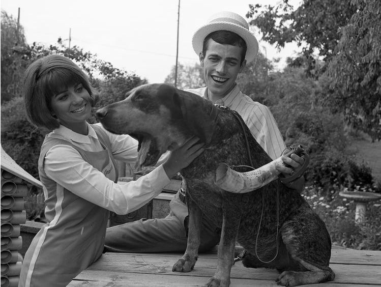 Smokey III yawns while posing for the cameras in 1968 with cheerleader Jeannie Gilbert and Adawayhi president Keith Richardson.