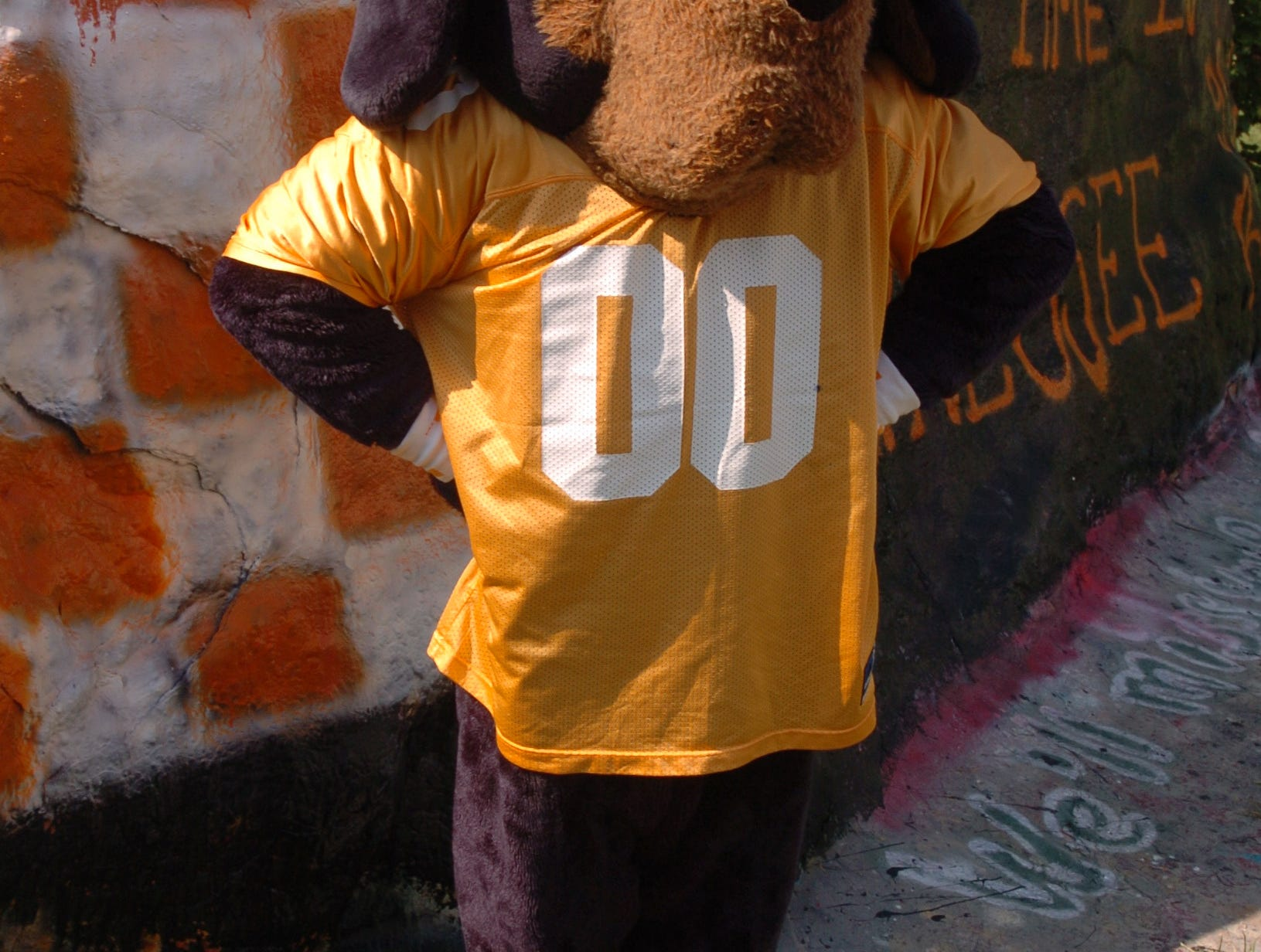 Smokey gets ready to tailgate.  7/2004