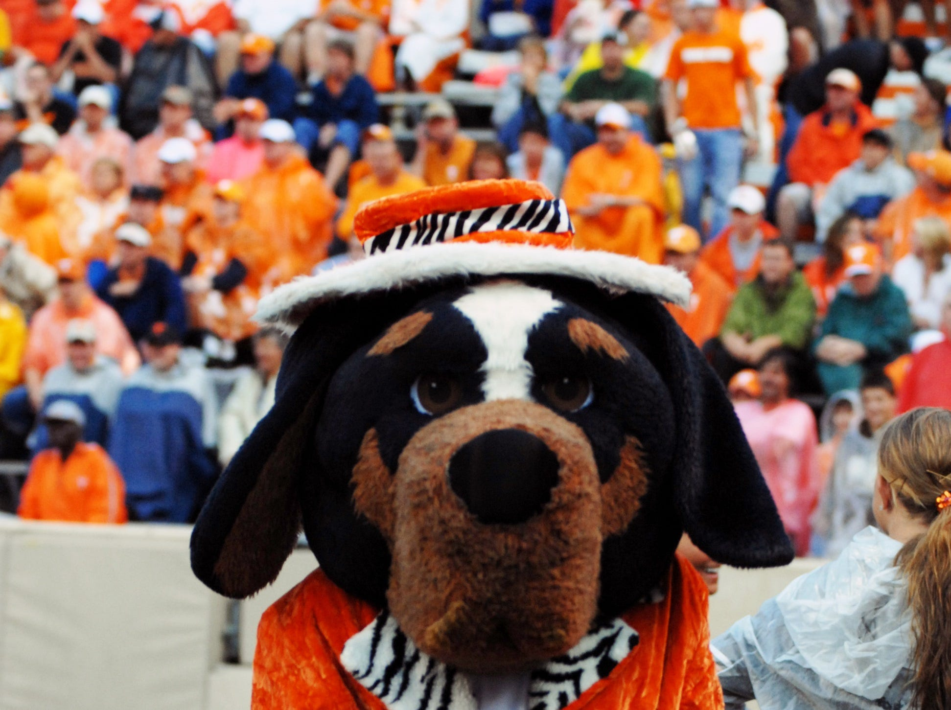 Smokey wears an orange velvet jacket and hat during a UT football game, 2007.