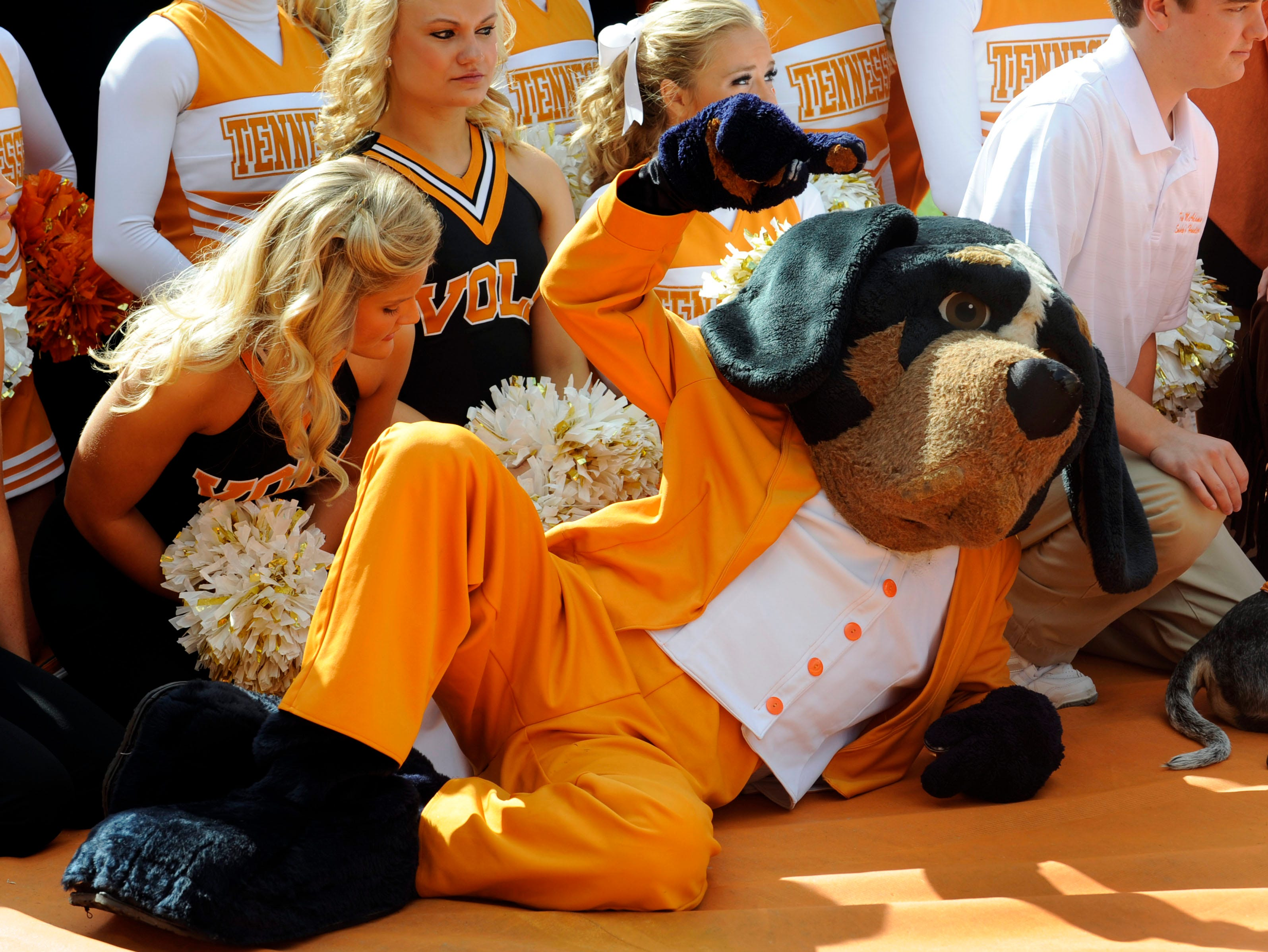 Smokey poses with the Tennessee Volunteer cheerleaders for photos before the start of the Volunteers  game against the Buffalo Bulls in Neyland Stadium Saturday, Oct. 1, 2011.