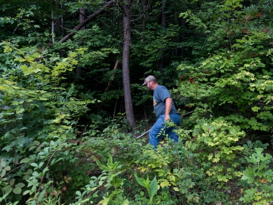 Kenny Wilkerson searches for signs of deer at his family's property in Maynardville on Wednesday, Aug. 22, 2018.