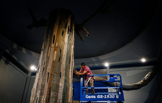 Colombia-born artist Federico Uribe is creating a tree out of old khaki pants and green socks that will be displayed in the rotunda of the Memphis Brooks Museum of Art.