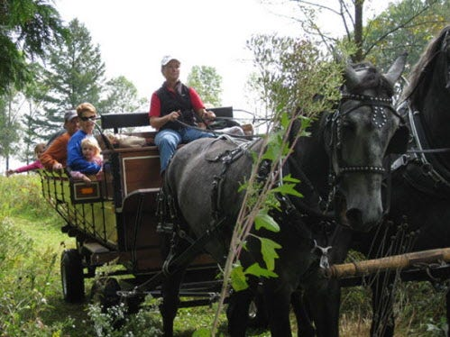 Horse-drawn wagon rides are part of the fun at Apple Harvest Festival at Retzer Nature Center.