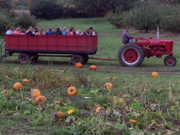 School groups and others get a hayride thru the pumpkin patch at Apple Holler.