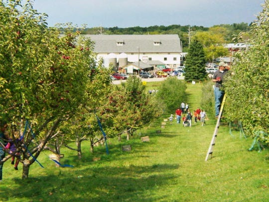 Here\'s where to go for apple picking, pumpkin patches in Wisconsin