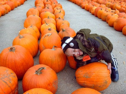 Logan Menke , 4, tries to pick up the pumpkin he selected to take home with him while visiting Lindner's Pumpkin Farm in New Berlin.