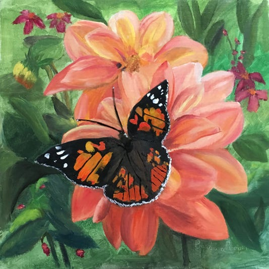 Butterfly On Dahlia Ref Krystana Orzel Jwnsa