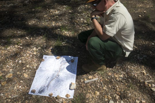 Jerry Nicholls, U.S. Forest Service timber staff, looks at a map of the General Springs Timber sale in the forest north of Payson.