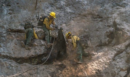 Crews work to extinguish a snag on the Ramsey Canyon Fire.