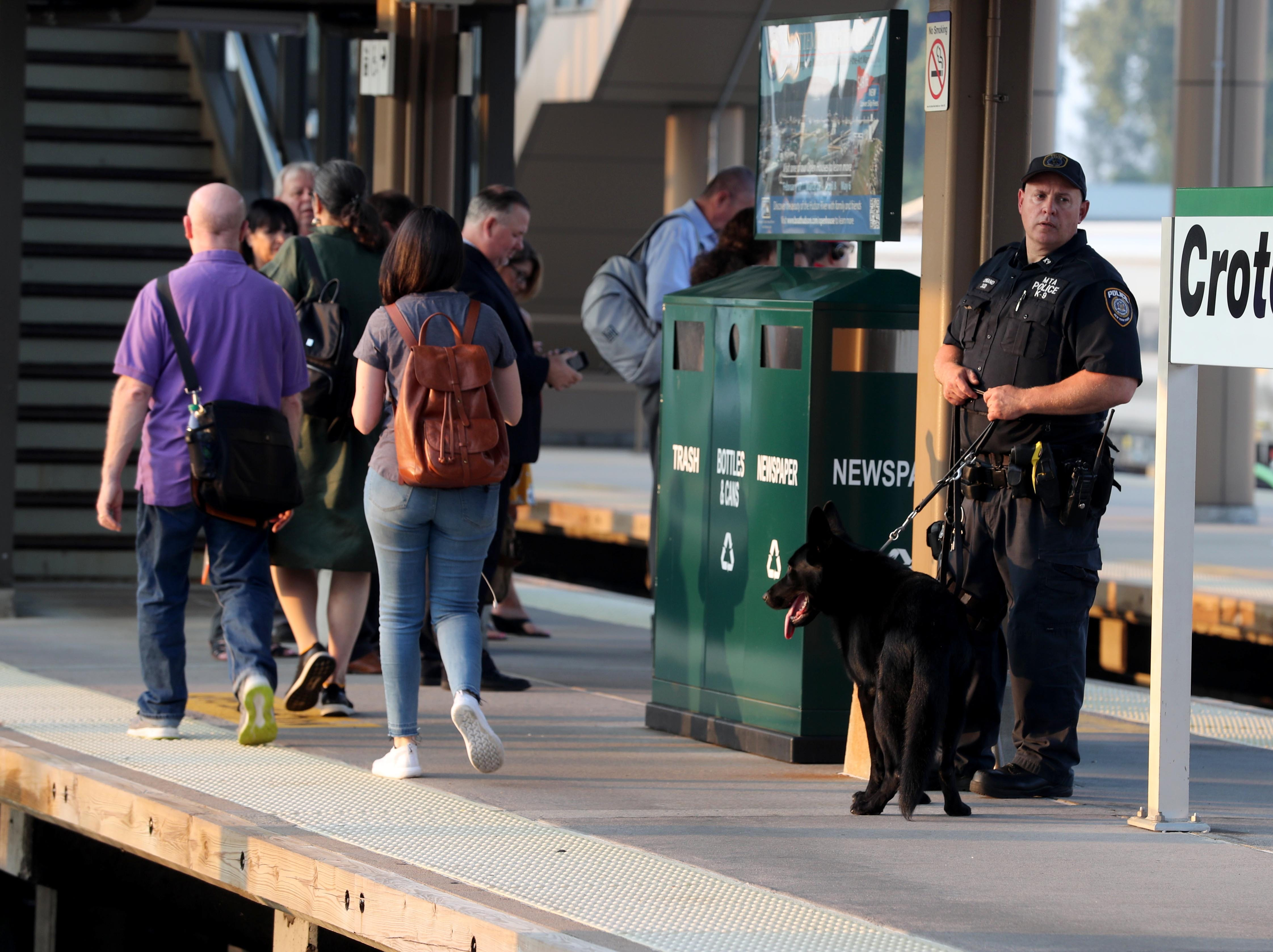 An MTA police officer and his canine partner stand on the platform at the Croton-Harmon station during a multi-department safety drill Aug. 28, 2018. Officers from the MTA, Amtrak, Croton Harmon, New York State Police, TSA, and Department of Homeland Security departments took part in the drill during the morning rush hour. The drill involved heightened platform patrols, increased security presence onboard trains, explosives detection canine sweeps, and counter-surveillance measures. Similar drills were also held at several other Hudson Line stations.