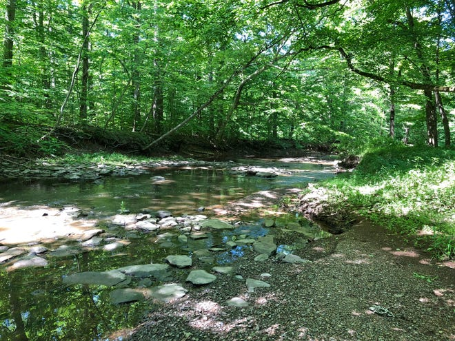 The preserved property includes fields and forests along the pristine Wickecheoke Creek.