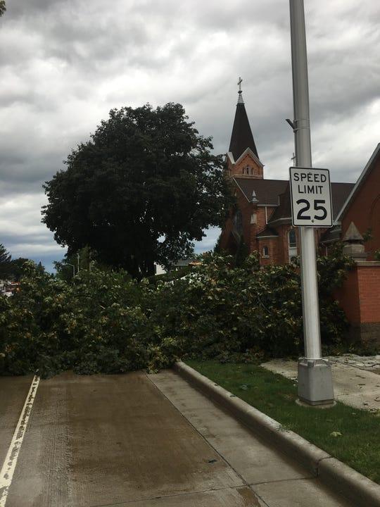 The tree that fell at St. Joseph's Catholic Church on Main Street in Waupun Aug. 28.