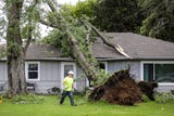 A tornado warned storm ripped through the Waupun area downing many trees and damaging buildings.