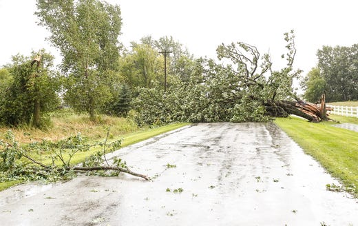 A wind-swept tree Tuesday, August 28, 2018 blocks Center Road northeast of Waupun, Wisconsin. During the afternoon, fierce storms hit Fond du Lac, with a potential tornado appearing in some places. Doug Raflik / USA TODAY NETWORK-Wisconsin