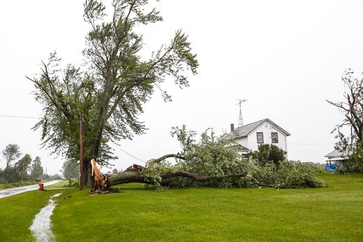 A tree knocked down by storm lies on Tuesday, August 28, 2018, at N3367 next to a Center Road house northeast of Waupun, Wisconsin. During the afternoon, fierce storms hit Fond du Lac, with a potential tornado appearing in some places. Doug Raflik / USA TODAY NETWORK-Wisconsin