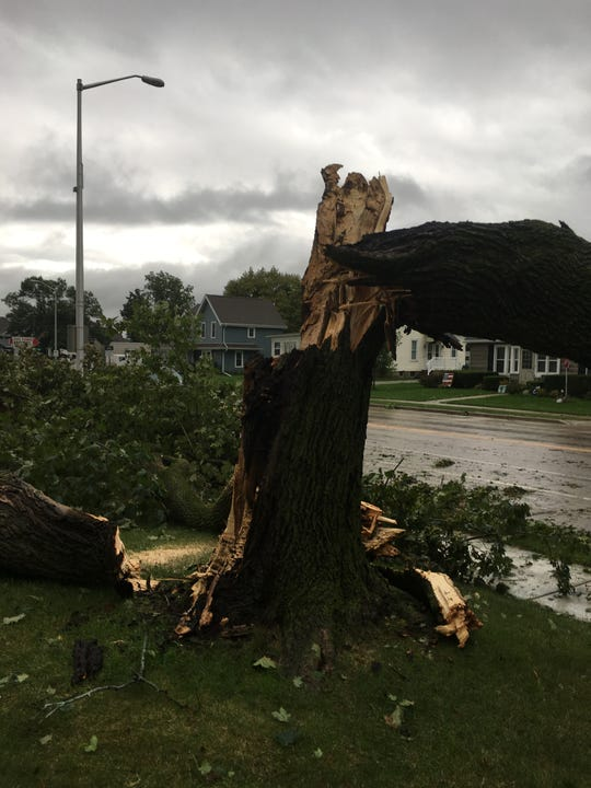 The tree outside of St. Joseph's Catholic Church in Waupun following strong storms on Aug. 28.