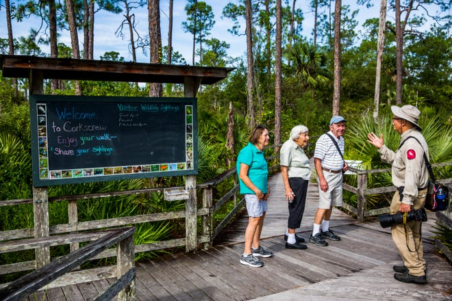 Volunteer Jerry Jackson leads a guided tour of the Audubon Corkscrew Swamp Sanctuary on Wednesday, Aug. 29, 2018.