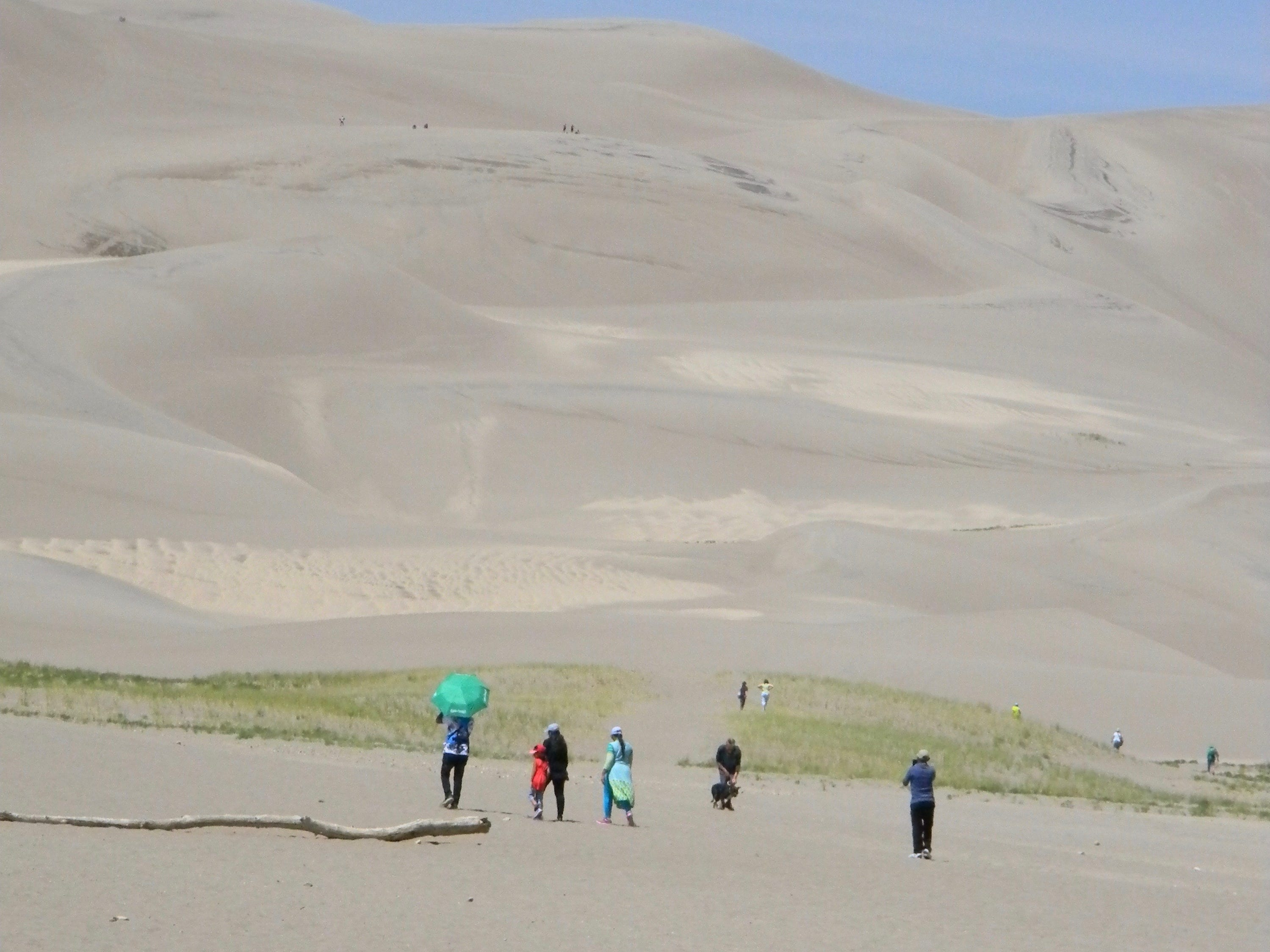 A daunting experience, visitors to Great Sands Dunes National Park contemplate the challenge of climbing 700 feet to the top.