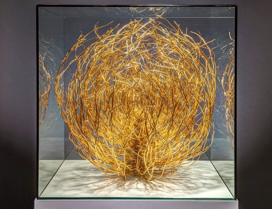 Tim Shockley's most recent series consists of a tumbleweed sculptures made from a variety of materials and placed in different types of casings.