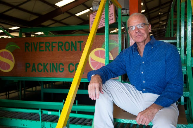 "Riverfront Packing Company president and CEO Dan Richey, 60, of Vero Beach, seen Aug. 24, 2018, has watched the iconic citrus industry of Florida decline in the past two decades. ""I used to be able to throw a ball to five packinghouses from where I sit today,"" Richey said. ""Today there's five packinghouses in Indian River County. We used to have 16. That all has occurred due to the effect of greening disease."" Several factors have contributed to the decline in citrus production in Florida; devastating hurricanes in 2004 and 2005, urban encroachment, citrus greening disease and shorter growing seasons. Despite the obstacles, Richey is not willing to give up. ""We're still here, and we're still optimistic, and we're not going anywhere,"" Richey said."