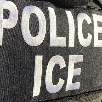 Data show that illegal immigration does not lead to more crime: Alex R. Piquero