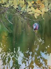 Kris Parins, Green Heron, Red Mangrove, 2018, watercolor