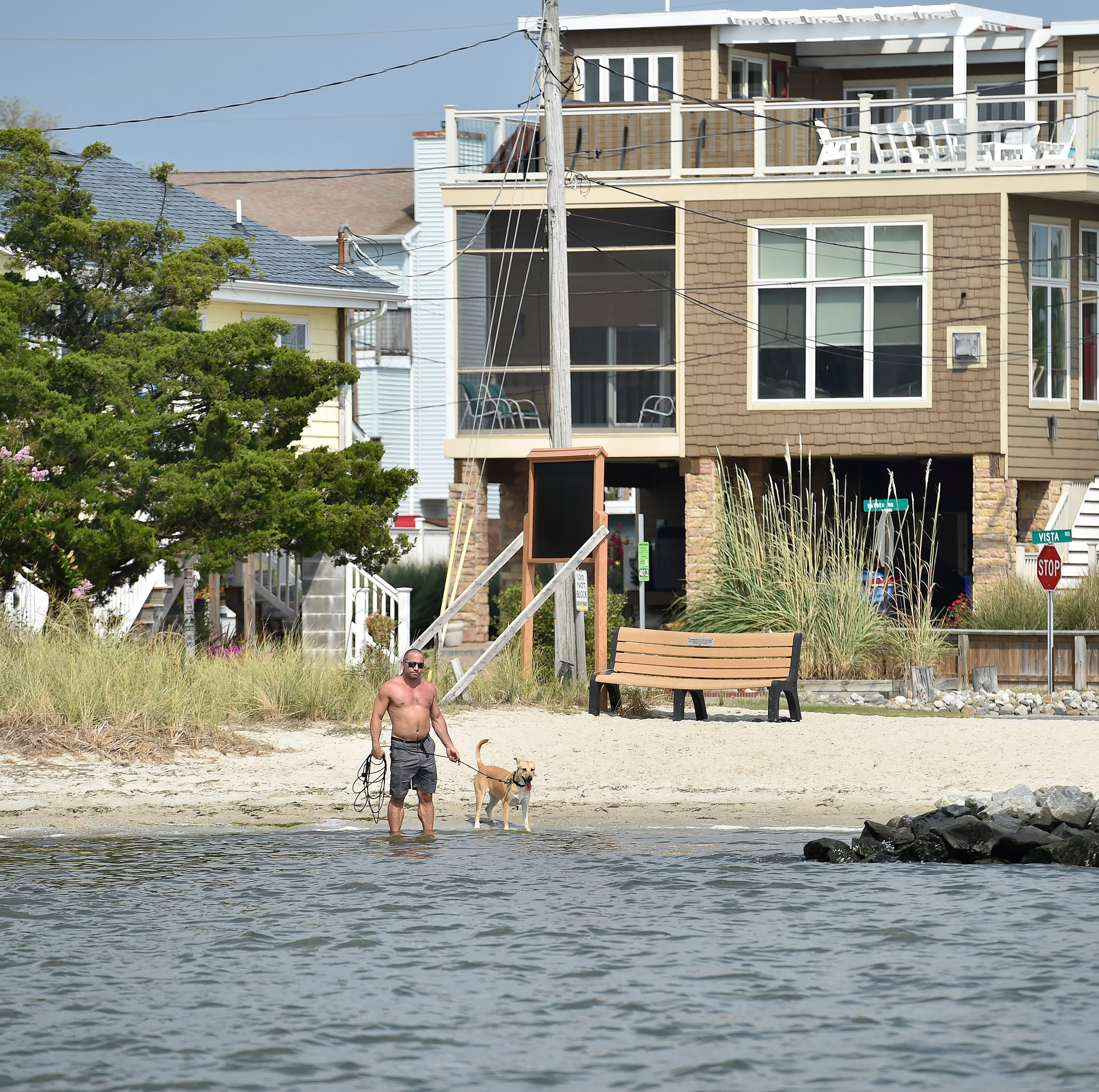 A strong market could be masking sea level rise's impact on Delaware coastal home values