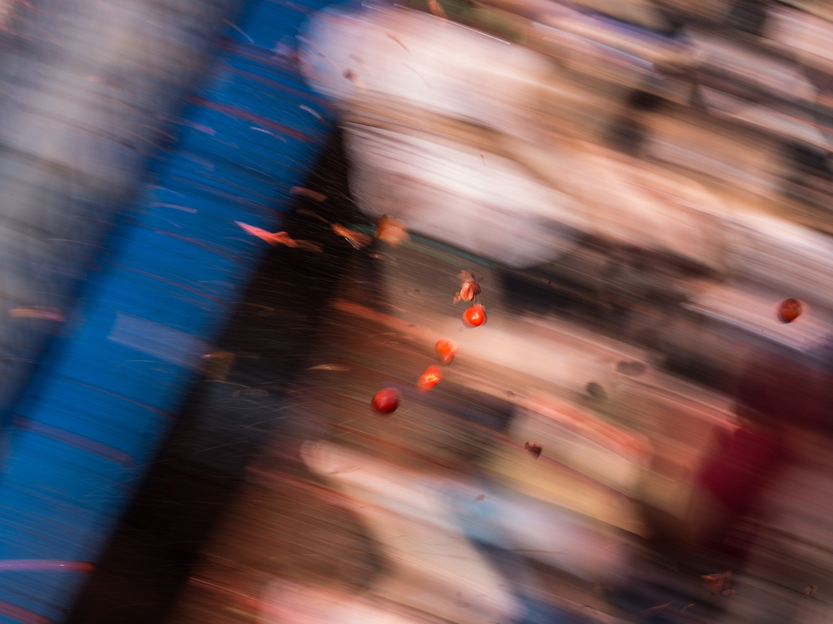 epa06981314 People take part in the traditional Tomatina battle in Bunol, Valencia, 29 August 2018. As every year on the last Wednesday of August, thousands of people visit the small village of Bunol to attend the Tomatina, a battle in which tons of ripe tomatoes are used as weapons. This year, a total of 145 tons of ripe tomatoes will be thrown between more than 22,000 participants.  EPA-EFE/RODRIGO JIMENEZ ORG XMIT: GRAF1774