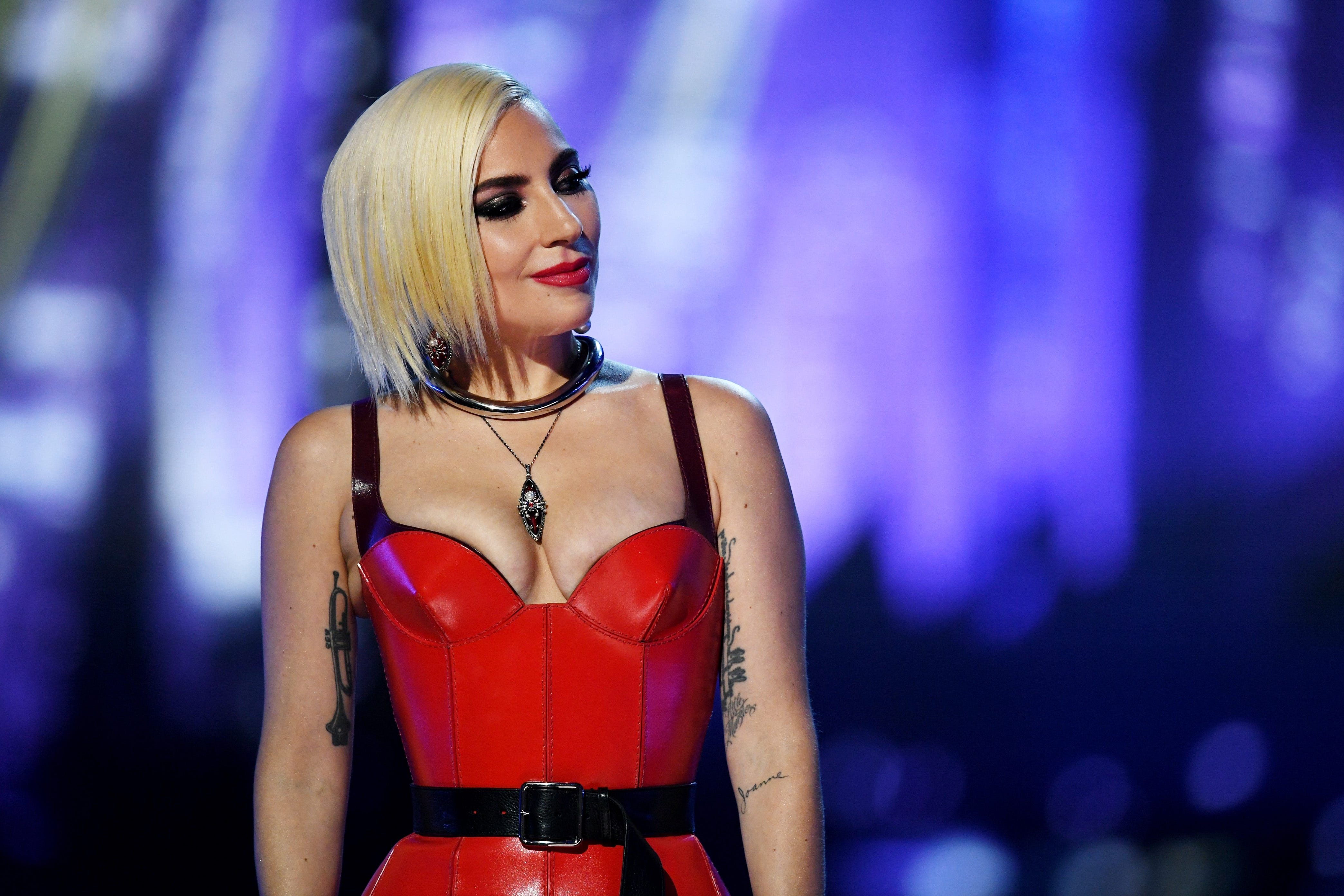 Lady Gaga Flashes Her Post Op Vagina