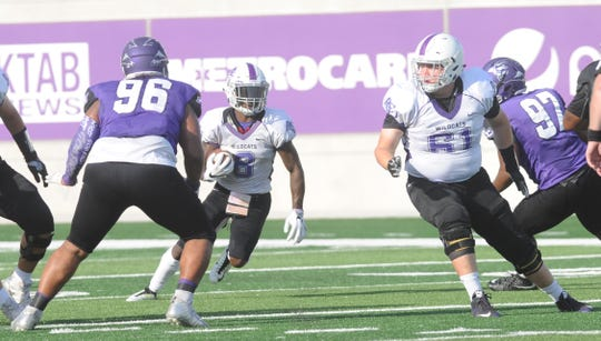 Wylie grad Kade Parmelly (61) blocks for an ACU receiver during the Wildcats' scrimmage Aug. 18 at Wildcat Stadium.