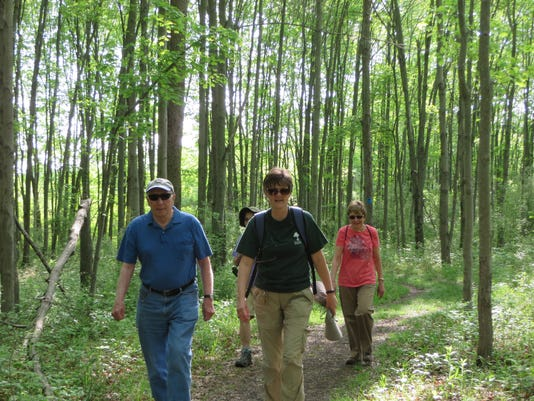 Forest Fitness' September nature walks PHOTO CAPTION