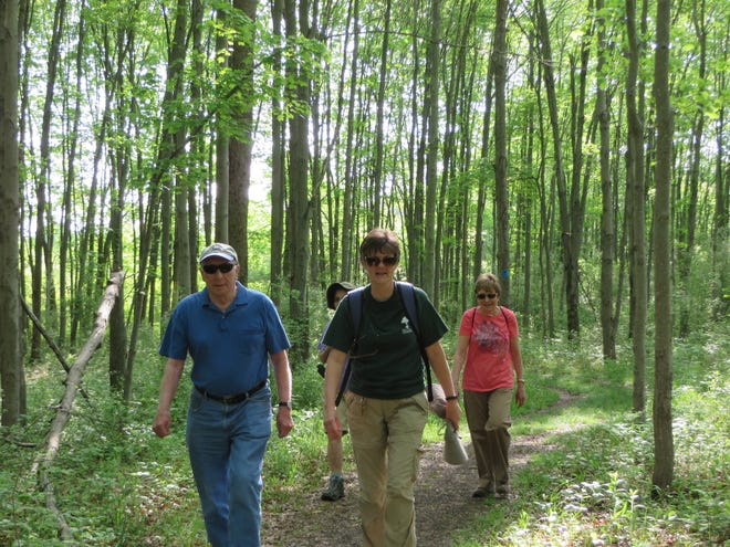 Naturalist-led Forest Fitness Walks take place fall, winter, and spring at the Environmental Education Center, 190 Lord Stirling Road in Basking Ridge section of Bernards.