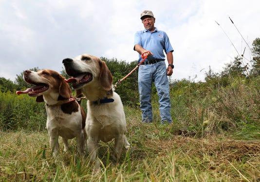 Cos Beagle Hunt