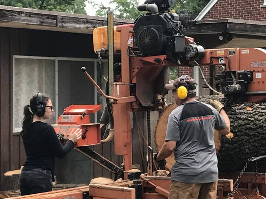 Annabella Lobaito of Log 2 Lumber and Chris Miller use a portable sawmill to cut up 275-year-old oak tree into boards at home in Ferndale.